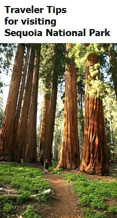 Traveler Tips for Visiting Sequoia National Park -for #travel info,tips and inspiration, visit itsoneworldtravel.com