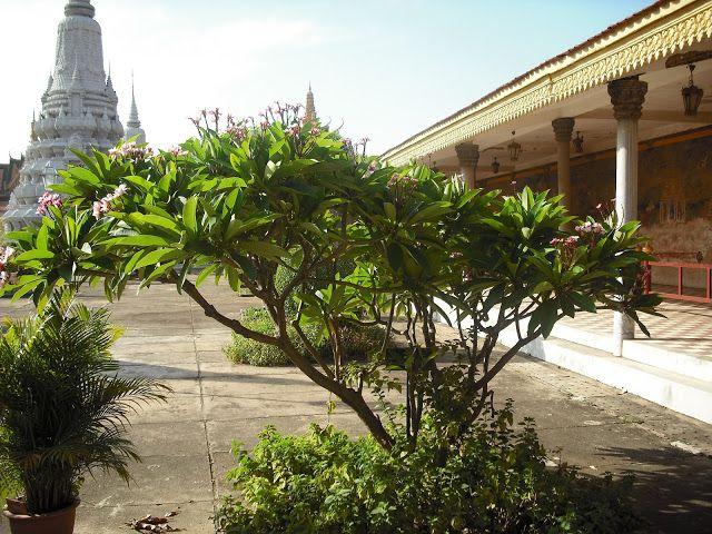 WWW Wiersze Wycieczki Wspomnienia: Phnom Penh - stolica Kambodży