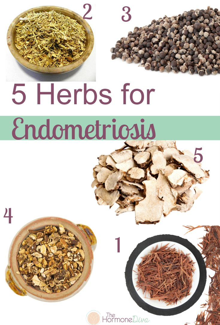 5 Herbs For Endometriosis | The Hormone Diva