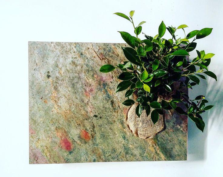 Quadro vegetale verticale di Verdecontemporaneo00 su Etsy