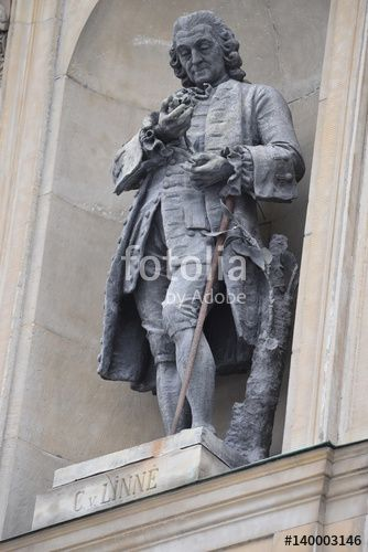 "Download the royalty-free photo ""Carl Linnaeus Monument on the Royal Palace facade in Stockholm, Sweden"" created by Ciaobucarest at the lowest price on Fotolia.com. Browse our cheap image bank online to find the perfect stock photo for your marketing projects!"