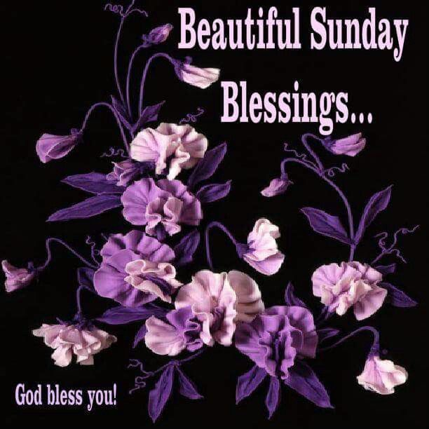 Sunday Blessings  sunday sunday quotes blessed sunday sunday blessings sunday pictures