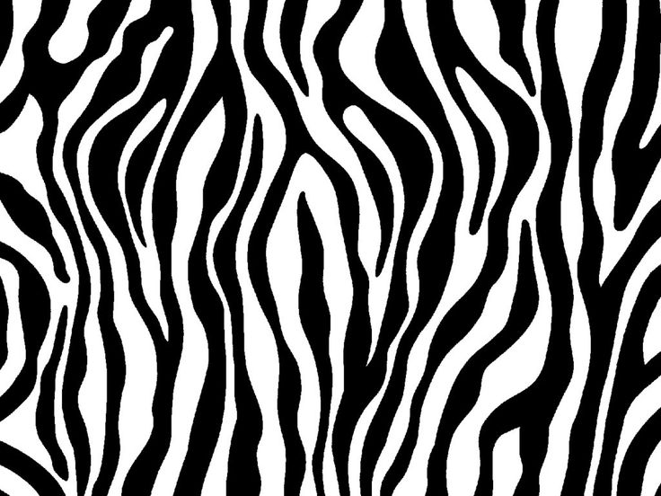 zebra print | patterns...