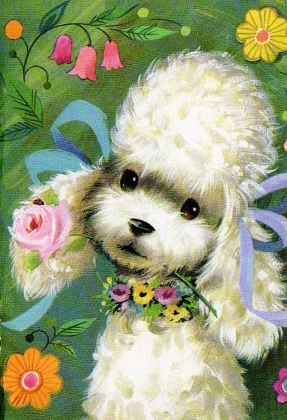 Poodle note card