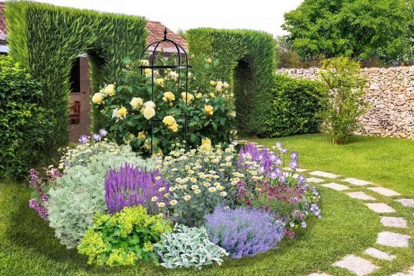 Duftende Bienenweide Garten Bepflanzen Garten Pflanzen Garten