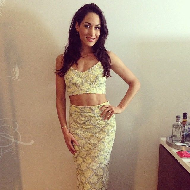 17 best images about brie bella on pinterest mondays Nikki bella fashion style