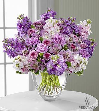Лаванда цветы Денвер, цветы лаванды Денвер CO, цветы лаванды Денвер Колорадо