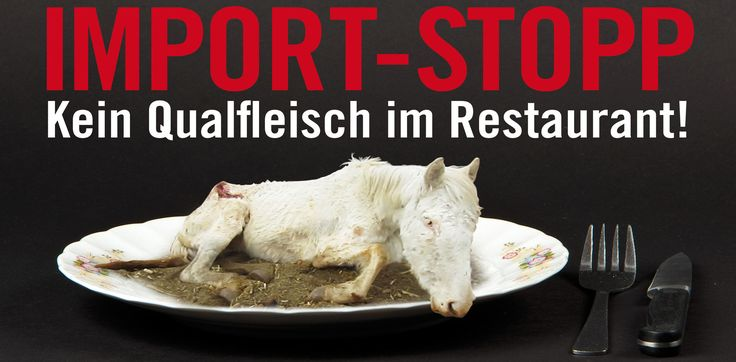 """Call to importers With your signature, show the red card to the person responsible for the horse trampling. Please sign our """"IMPORTSTOPP FOR QUAL MEAT"""". We will ask the companies Delicarna, Skin Packing and Jemmely, as well as the large butcheries on behalf of all signatories, to stop the import immediately."""