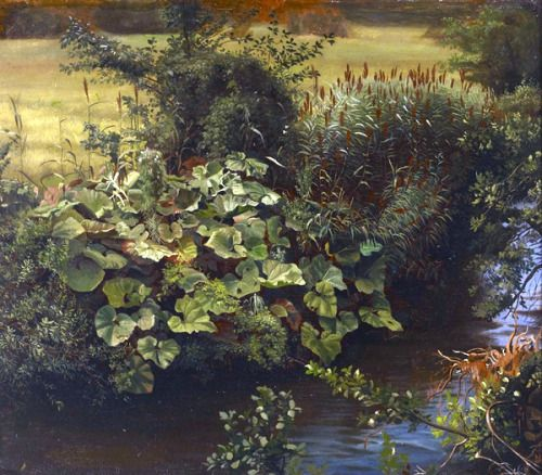 Hjalmar Munsterhjelm (1840-1905) - Stream with riparian vegetation.