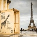 Campagne événementielle #zoo de #Vincennes #communication