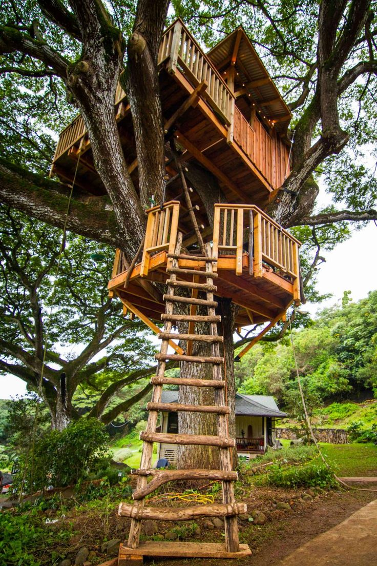 Diy tree stand plans - Catering To The Clients Two Young Children The Treehouse Also Features A 100