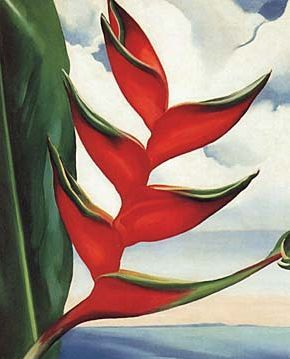 Heliconia by Georgia OKeeffe, 1939 Oil on Canvas