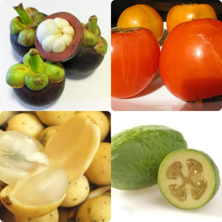 kumquat fruit fruit monster