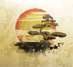 Resultado de imagen para bonsai tree with sunset