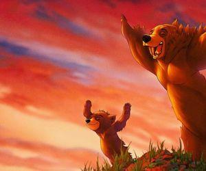 Koda fratello orso