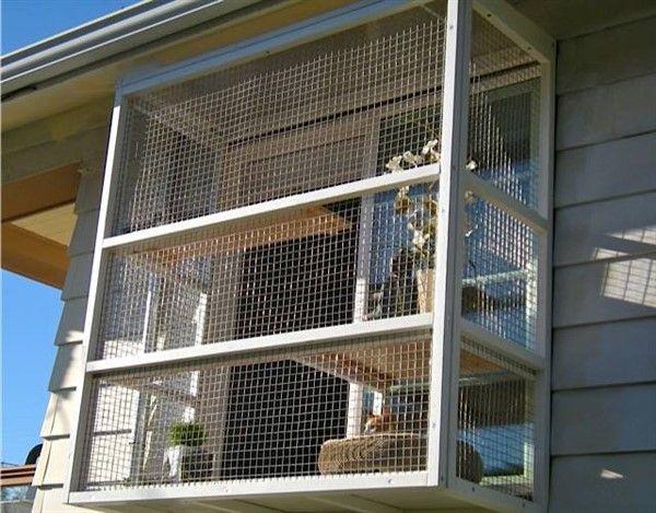 3 Safe Window Ideas For Cats Window Box Cat Solarium Window Sill Perch Unique Balcony Garden Decoration And Easy Diy Ideas Cat Window Cat Window Perch Outdoor Cat Enclosure