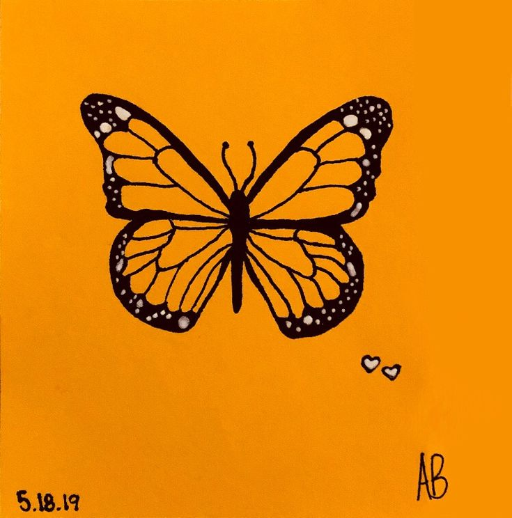 butterfly drawing simple easy sketch colorful aesthetic painting butterflies paintings canvas skateboard painted