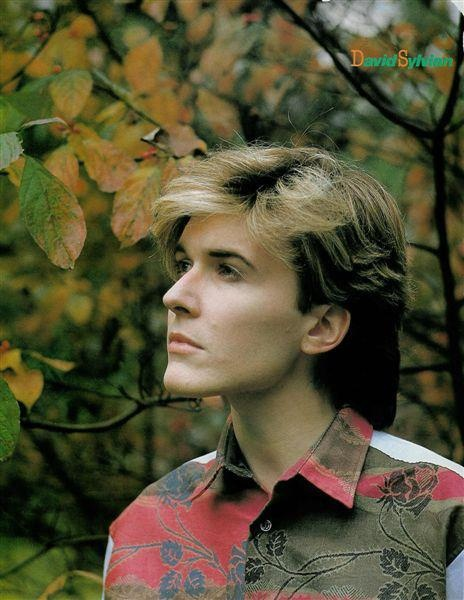 """David Sylvian Beautiful, talented, a poet at heart and words"" 