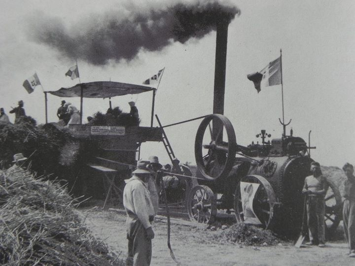 1938: Threshing in the area of Bassette. Thanks to Roberto Stanghellini for the picture - Photo by C'era una volta Ravenna on Facebook [ #ravenna #myRavenna]