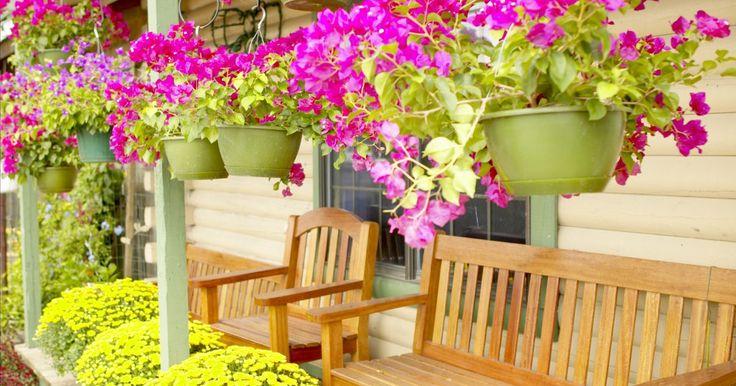 Ideas de paisajismo para un patio delantero pequeño. Un patio delantero atractivo da la bienvenida a los invitados hacia la puerta principal y se ve atractivo desde la calle. El mantenimiento de un ambiente cálido pero sin desorden en un pequeño patio delantero parece un desafío, pero se requieren sólo unas pocas técnicas de diseño, junto con una adecuada selección de plantas para animar a tu jardín ...