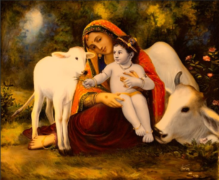 By Advaita Acarya Dasa Protecting the cows: If we accept the cow as our mother…