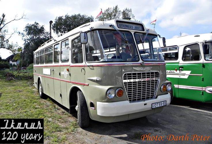 1000 ideen zu ikarus bus auf pinterest retro bus for Ikarus wohnen