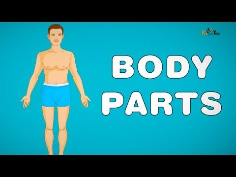 Kids Learning Videos: My Body Parts Song - Body parts song for children ...