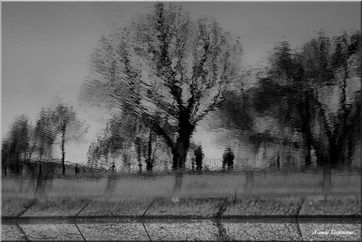 Reflex en blanco/nero