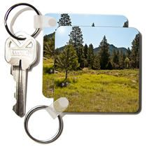3dRose - Jos Fauxtographee Realistic - A Green Meadow up in The Pine Valley, Utah Mountains with Trees - Key Chains