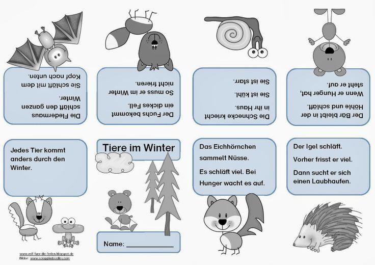 Tiere im Winter - Faltheft: