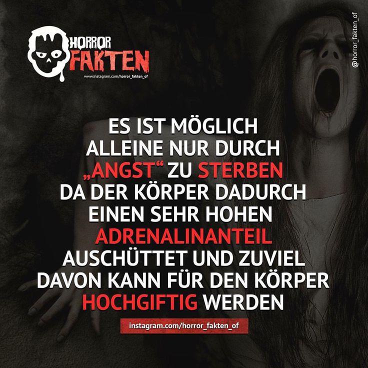 Angst vor der Angst?  #horror #horrorfakten #fakten