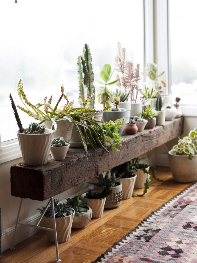 what a beautiful plant table!