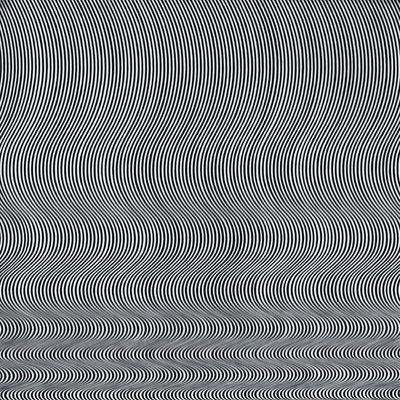 I couldn't have it in my house, but it's pretty cool! Blaze Study - Bridget Riley - WikiPaintings.org