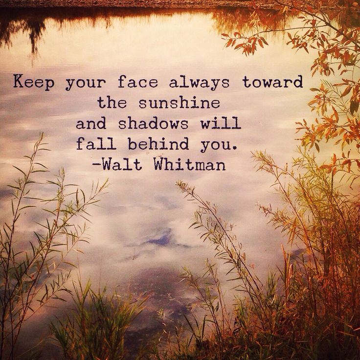 Wednesday Wisdom:  Walt Whitman quote  Photo: Amanda Hobbs Instagram.com/dearstellajewellery