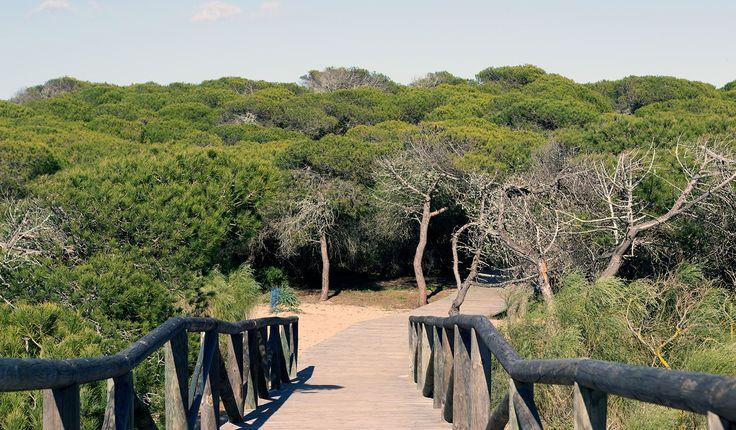Entrada a la playa de Piedras Gordas, Rota, Cádiz.  http://www.cadiz-turismo.com/playas/rota