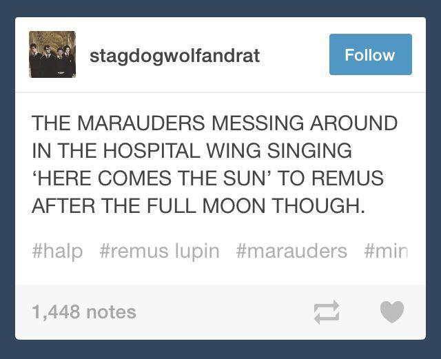 I love Marauders headcanons. | HERE COMES THE SUN