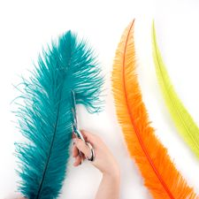 Trimming Ostrich Feathers : Working with Feathers : Tips and Techniques from The Feather Place. #thefeatherplace #workingwithfeathers #feathers Visit our DIY Arts & Crafts Gallery or Shop Feathers: www.featherplace.com/idea-gallery