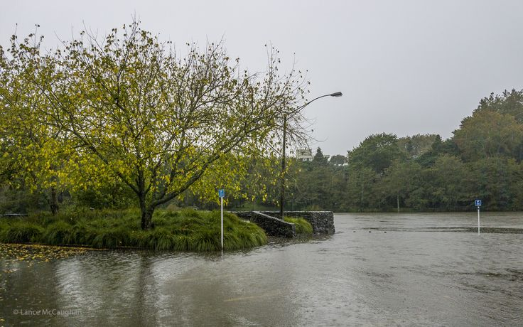 https://flic.kr/p/SzsMqT | Flooded Waikato River | Hamilton's new 120 minute parking for submarines Flooded Waikato River
