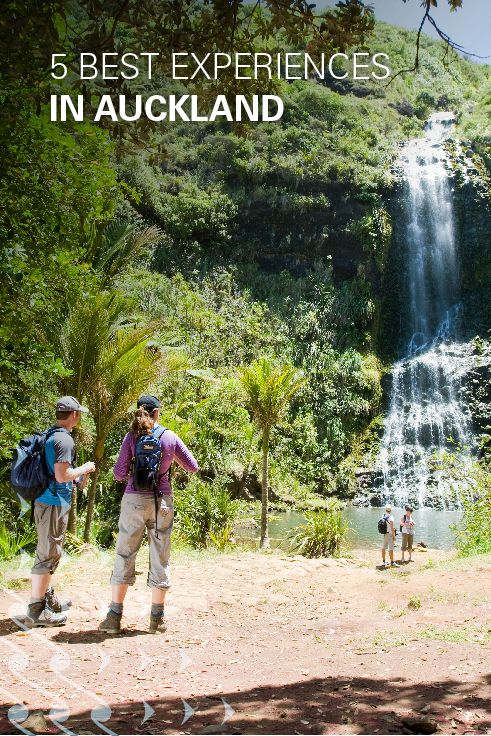 Don't miss these top five experiences when you visit Auckland New Zealand