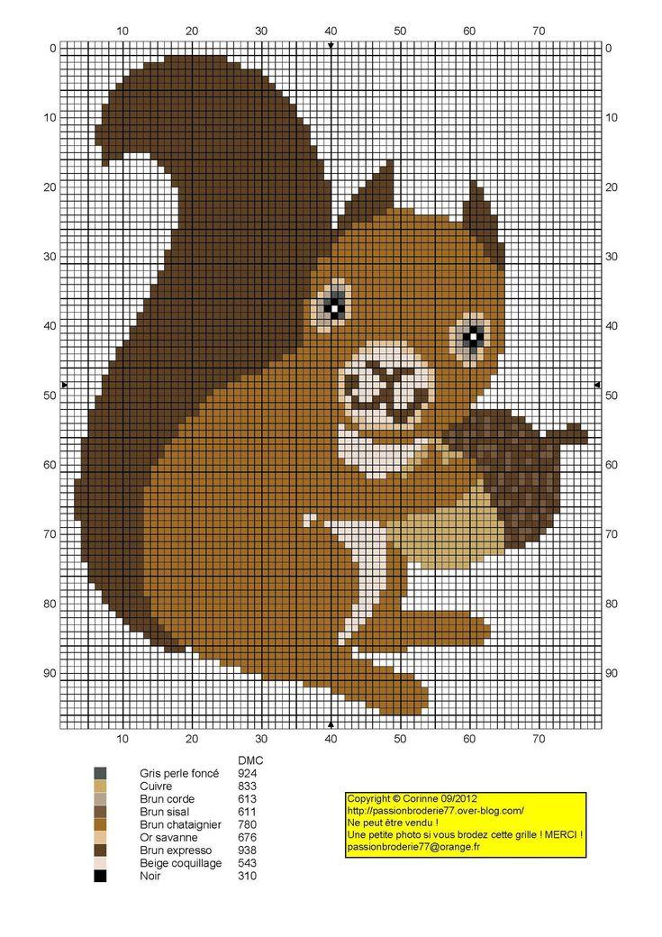Squirrel acorn