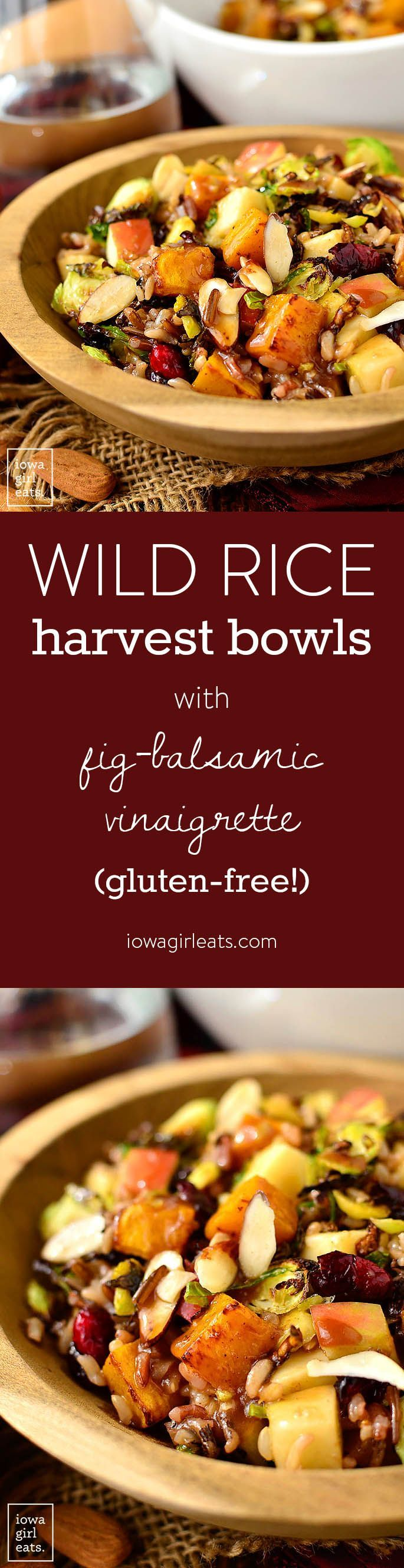 Wild Rice Harvest Bowls with Fig Balsamic Vinaigrette are full of healthy, fall-inspired ingredients. Make a big batch then enjoy for lunch all week long! | iowagirleats.com