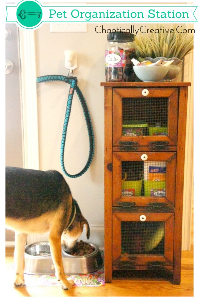 Pet Organization Station ... how to organize pet supplies