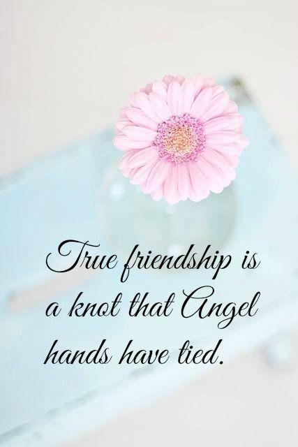 True Friendship ;)