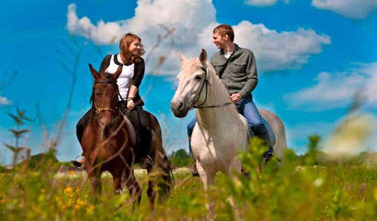 Конные прогулки в Геленджике. Прогулки на Лошадях в Геленджике. Конные прогулки в Геленджике стоимость, цена.Конные прогулки в Прасковеевке.