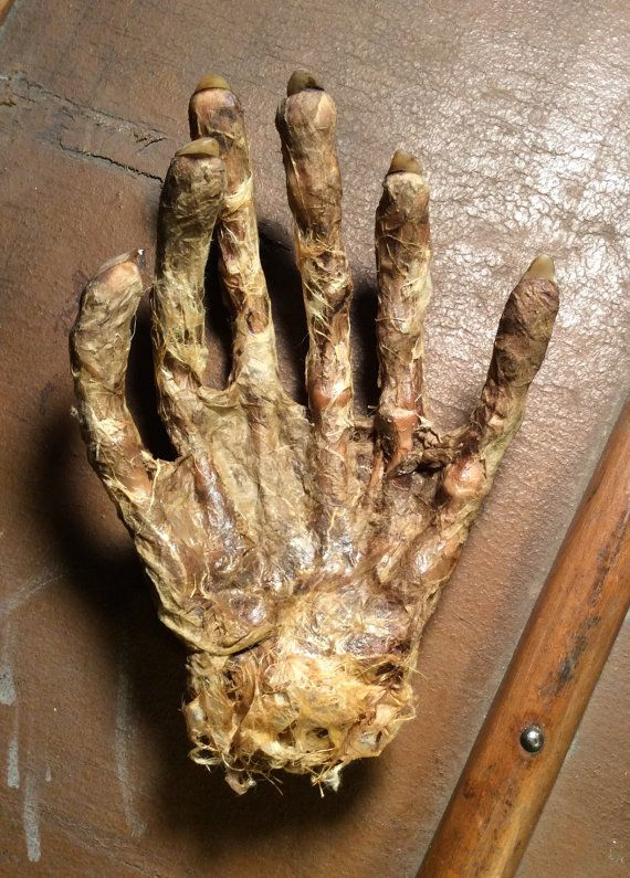 GRGARRKKK!!!! gurgled Dr. Sombra as he attempted to pry the mummified Hand of Set the First from his throat.   Come again? replied his assistant Eduardo who was busily dusting the professors Etruscan ear spoon collection.   HRUKRRRGLE!!! the professor replied as he whirled about,