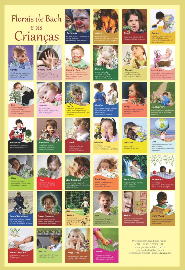 Poster Florais de Bach e as Crianças - formato A3 - papel couchê 210gr