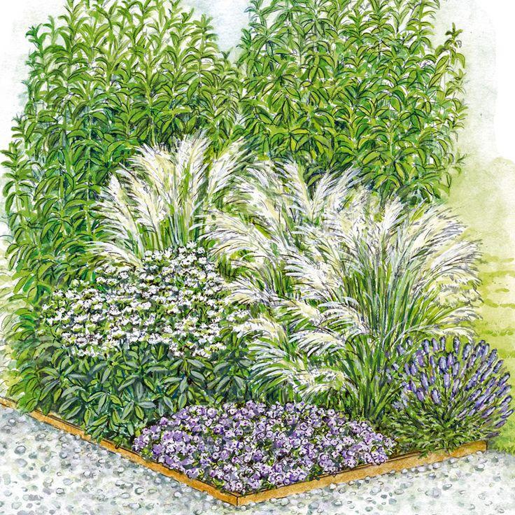 Für saubere Kanten ist das Beet mit Cortenstahl eingefasst. Am Rand stehen weiße Spornblume, Kaskaden-Thymian und Lavendel. Dahinter erheben sich im Sommer die Blütenähren des Berg-Reitgrases und hohe Astern-Horste