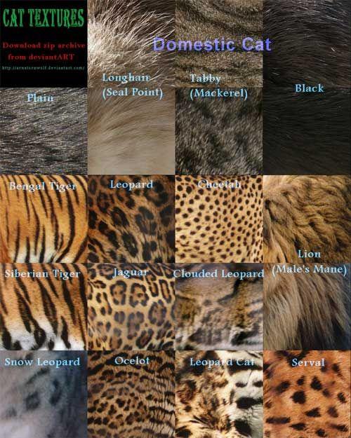 Dier texturen