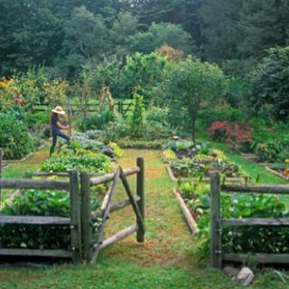 Country Backyard Landscaping | Country Garden | Farm, Garden & Landscape