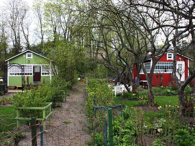 Mökkejä Herttoniemen siirtolapuutarhassa. Kuva: MV/RHO 125831:5 Timo-Pekka Heima 2008